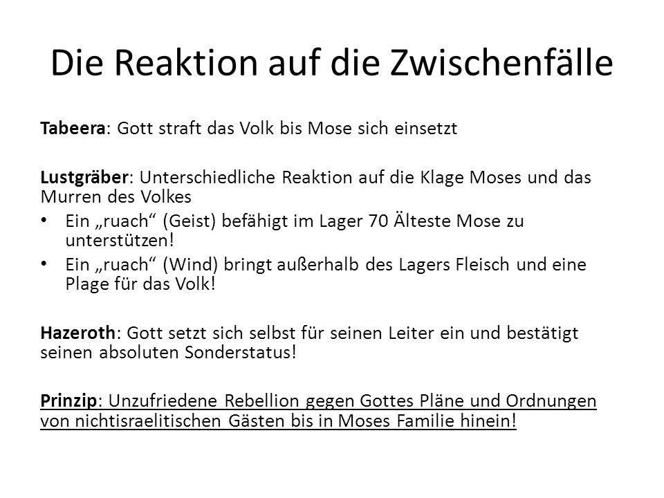 Die Reaktion auf die Zwischenfälle Tabeera: Gott straft das Volk bis Mose sich einsetzt Lustgräber: Unterschiedliche Reaktion auf die Klage Moses und