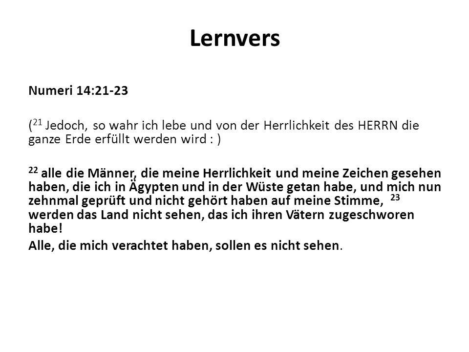 Lernvers Numeri 14:21-23 ( 21 Jedoch, so wahr ich lebe und von der Herrlichkeit des HERRN die ganze Erde erfüllt werden wird : ) 22 alle die Männer, d