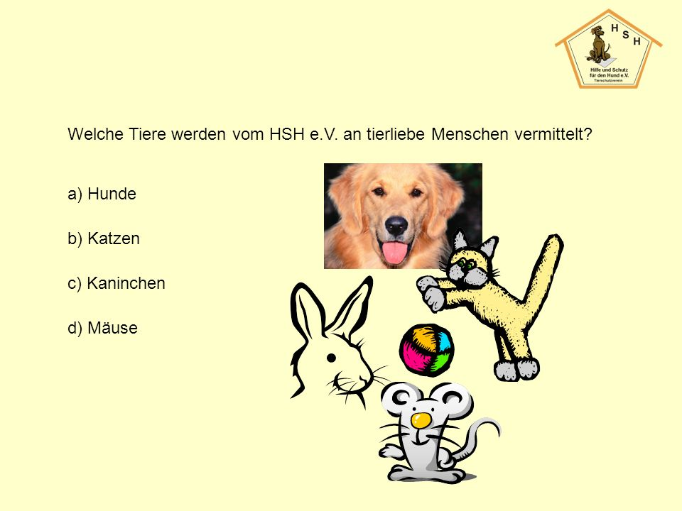 Welche Tiere werden vom HSH e.V. an tierliebe Menschen vermittelt? a) Hunde b) Katzen c) Kaninchen d) Mäuse