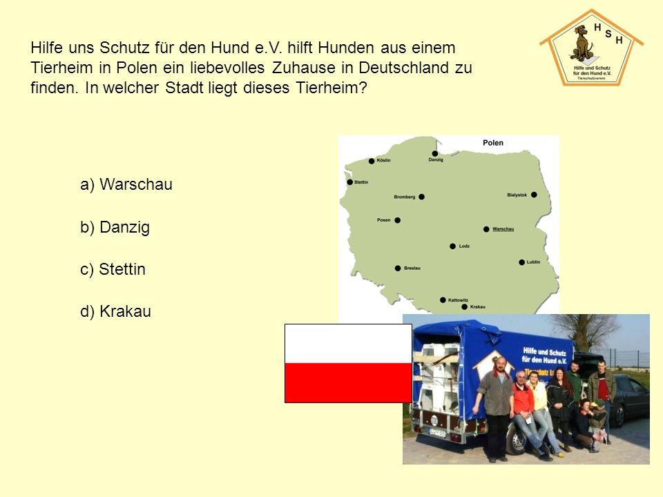 Hilfe uns Schutz für den Hund e.V. hilft Hunden aus einem Tierheim in Polen ein liebevolles Zuhause in Deutschland zu finden. In welcher Stadt liegt d