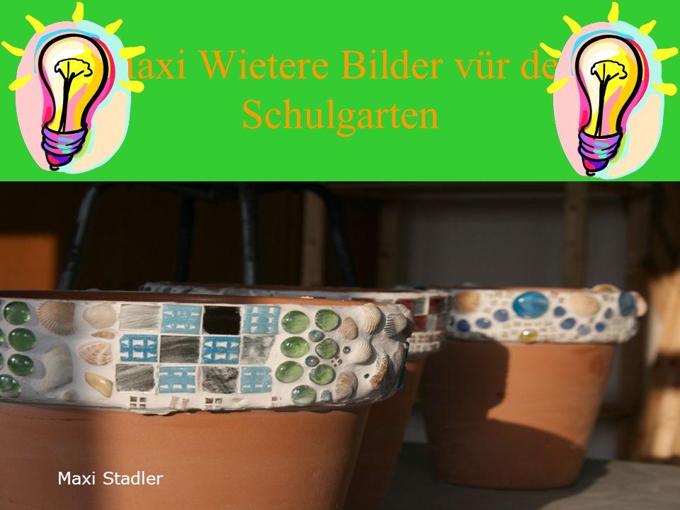 Maxi : Bilder Schulgarten