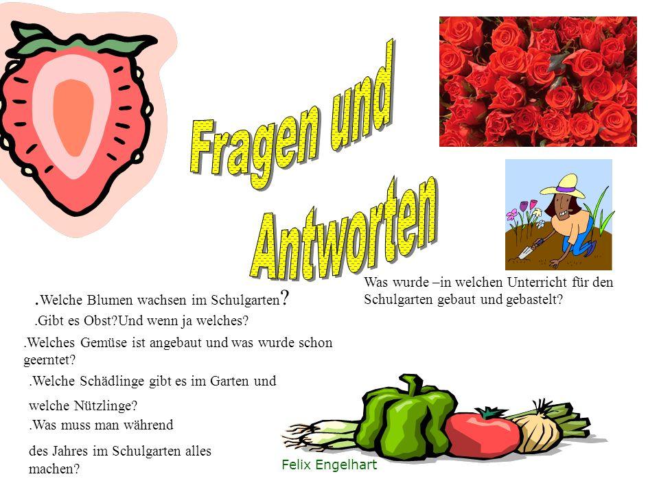 Johannes Brenker Unkraut gerupft Regenwürmer gesammelt Blumentöpfe beschmückt Löwenzahn Tee gekocht Viel spaß gehabt!!! Viel Blödsinn gemacht!!!