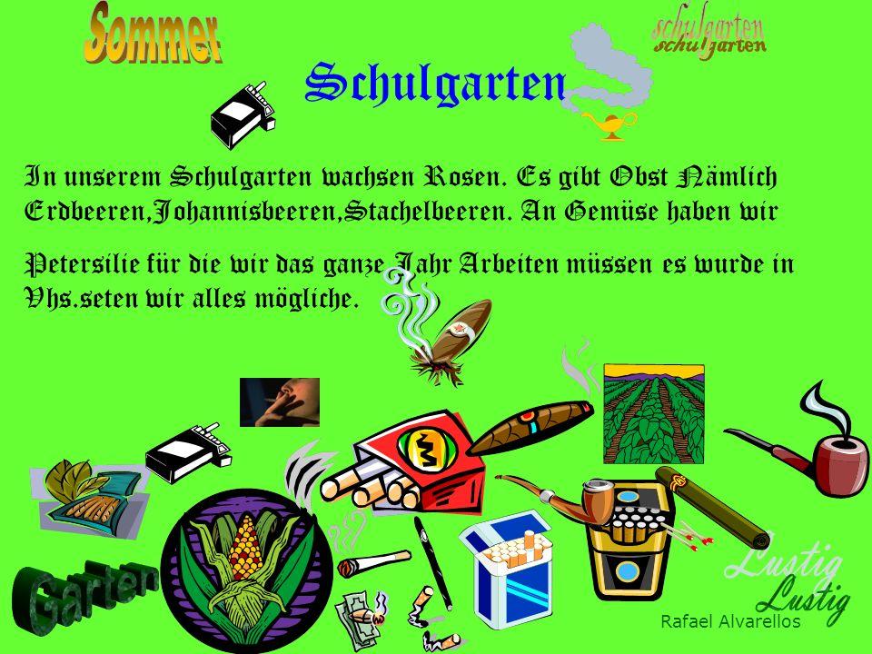 Felix Engelhart Tontöpfe basteln Regenwürmer sammeln Unkraut rupfen Pflanzen Kehren Umgraben Vhs ist cool