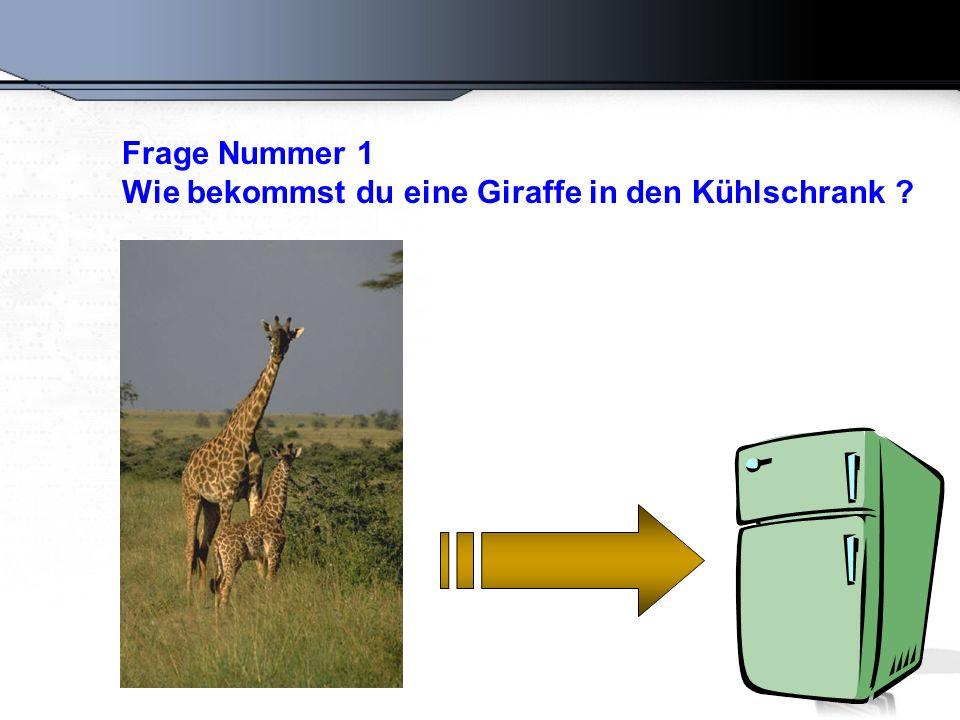 Die richtige Antwort : Öffne den Kühlschrank, gib die Giraffe rein und schliesse die Tür.