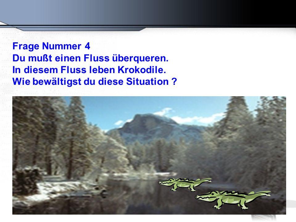 Richtige Antwort: Du schwimmst rüber.Warum. Alle Krokodile sind bei der Konferenz.
