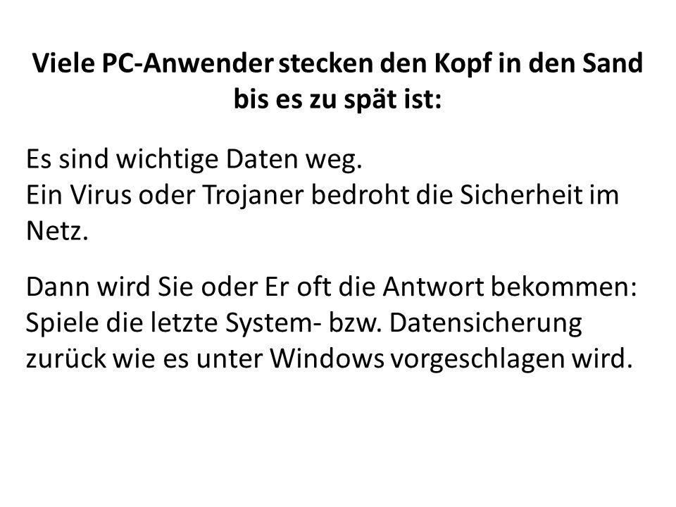 Viele PC-Anwender stecken den Kopf in den Sand bis es zu spät ist: Es sind wichtige Daten weg. Ein Virus oder Trojaner bedroht die Sicherheit im Netz.