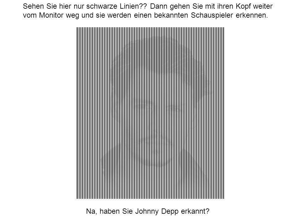 Sehen Sie hier nur schwarze Linien?.