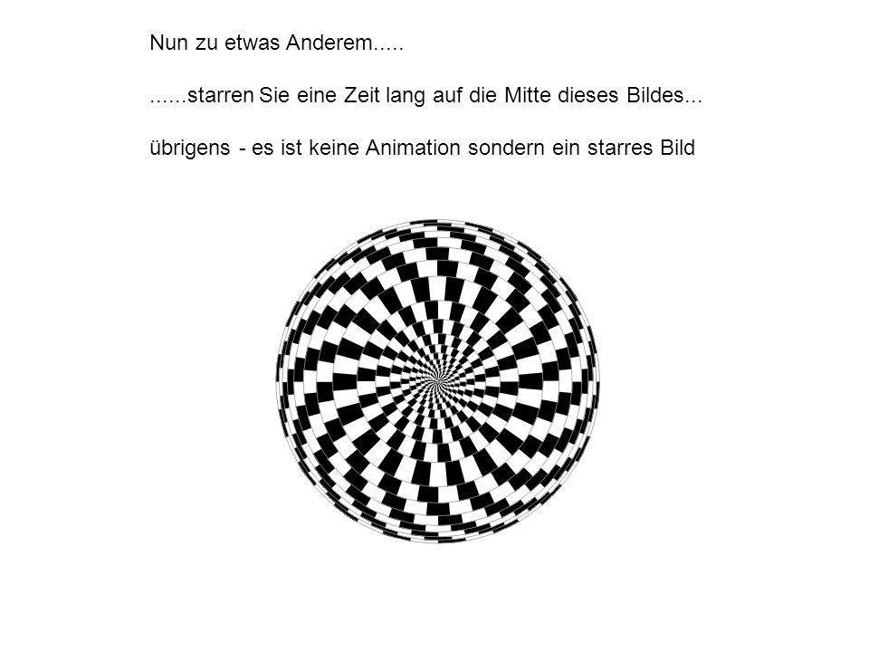 Die Illusion auf der folgenden Seite zeigt gleich auf verschiedene Arten verblüffende Wirkungen.