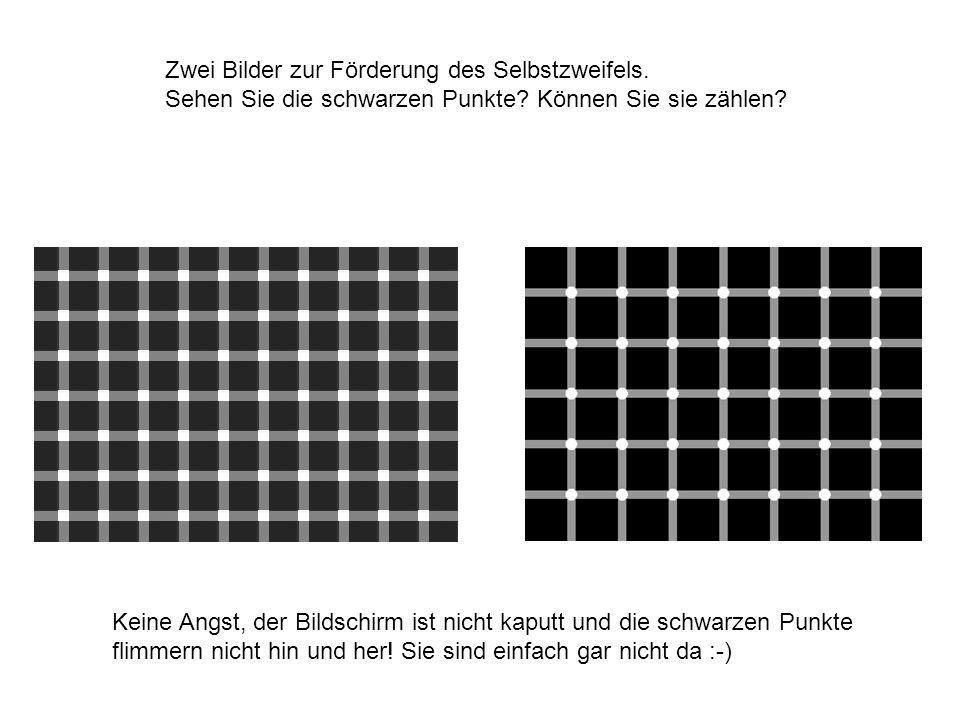 Zwei Bilder zur Förderung des Selbstzweifels.Sehen Sie die schwarzen Punkte.