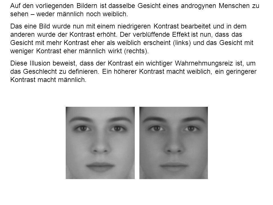 Auf den vorliegenden Bildern ist dasselbe Gesicht eines androgynen Menschen zu sehen – weder männlich noch weiblich.