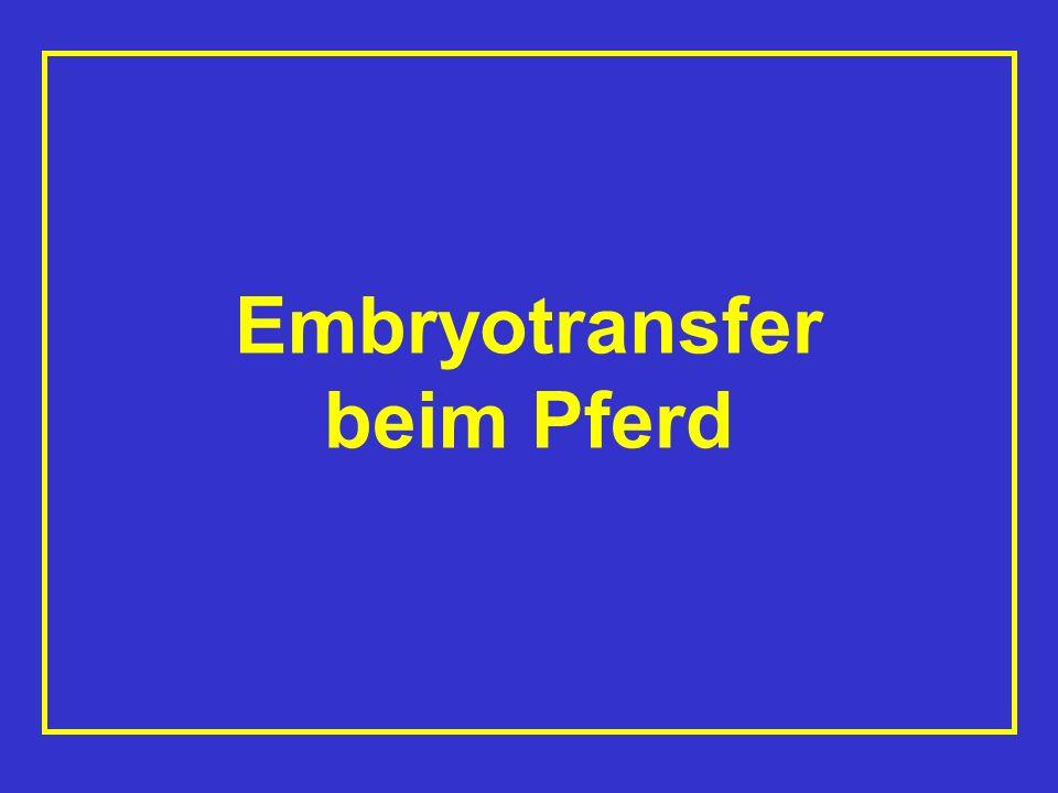 Definition Embryotransfer Gewinnung von Embryonen aus einem Spendertier und Übertragung auf eine Leihmutter, die sowohl Trächtigkeit als auch Aufzucht übernimmt