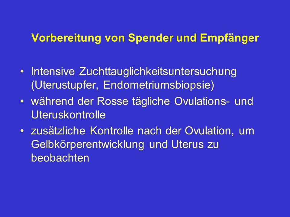 Vorbereitung von Spender und Empfänger Intensive Zuchttauglichkeitsuntersuchung (Uterustupfer, Endometriumsbiopsie) während der Rosse tägliche Ovulati