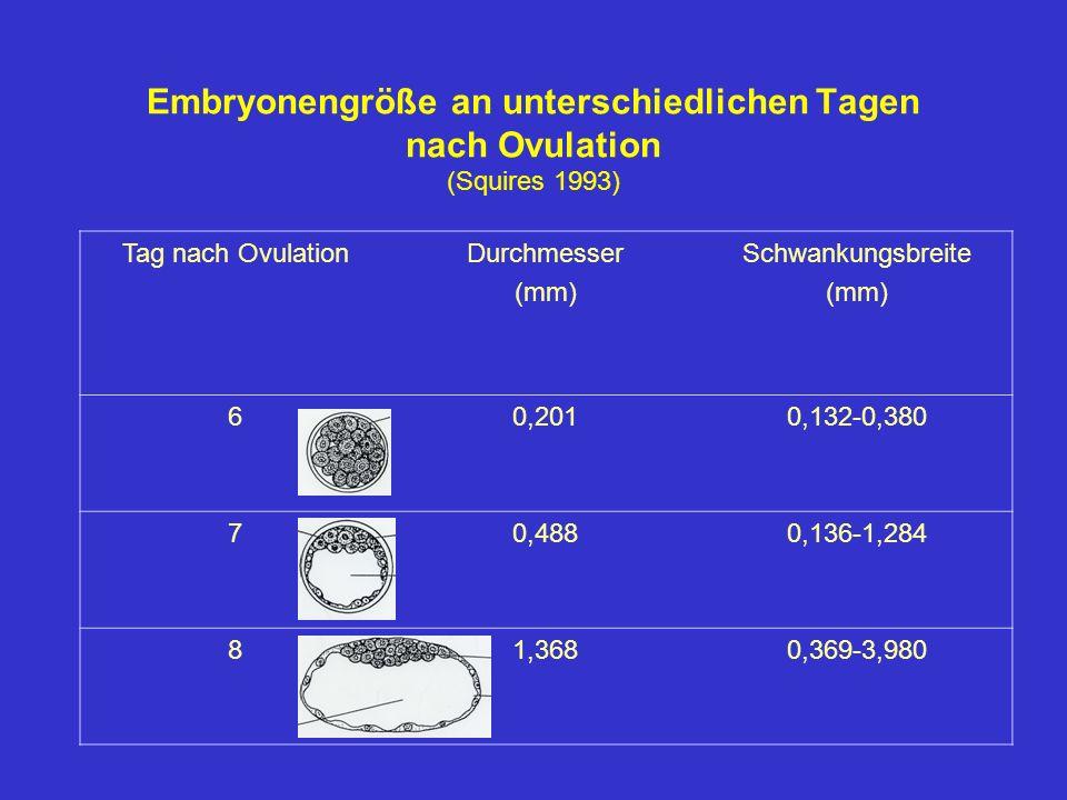 Embryonengröße an unterschiedlichen Tagen nach Ovulation (Squires 1993) Tag nach OvulationDurchmesser (mm) Schwankungsbreite (mm) 60,2010,132-0,380 70