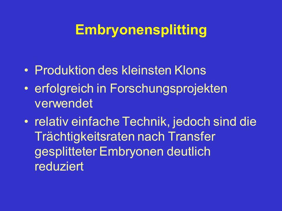 Embryonensplitting Produktion des kleinsten Klons erfolgreich in Forschungsprojekten verwendet relativ einfache Technik, jedoch sind die Trächtigkeits