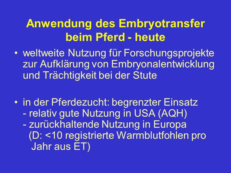 Anwendung des Embryotransfer beim Pferd - heute weltweite Nutzung für Forschungsprojekte zur Aufklärung von Embryonalentwicklung und Trächtigkeit bei