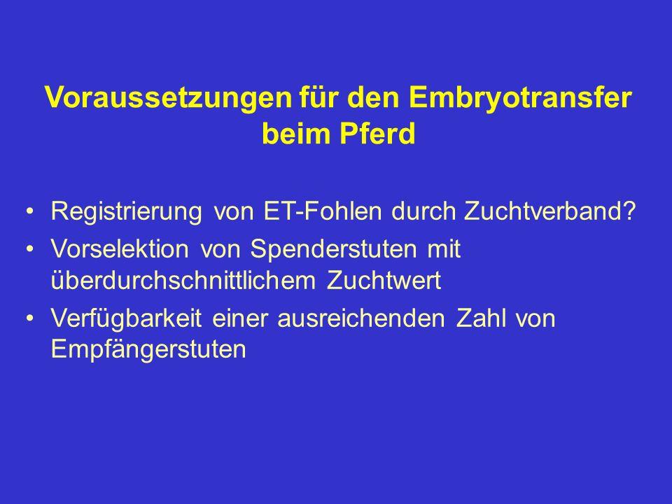 Voraussetzungen für den Embryotransfer beim Pferd II Zyklussynchronisation von Spender- und Empfängerstuten Verfügbarkeit hochklassiger Hengste mit sehr guter Fruchtbarkeit Abklärung der finanziellen Gegebenheiten