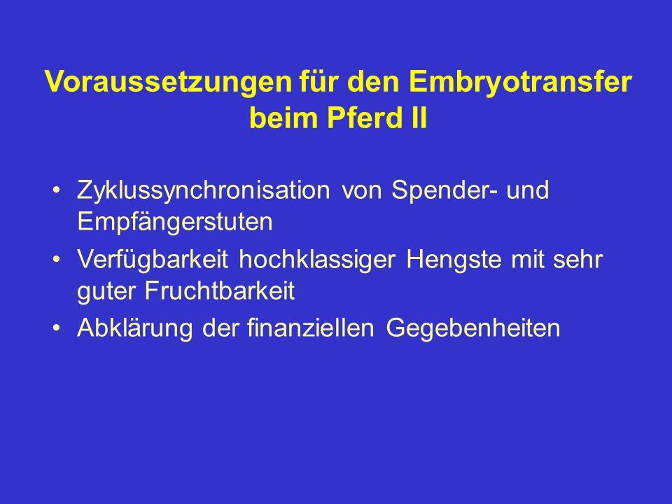 Voraussetzungen für den Embryotransfer beim Pferd II Zyklussynchronisation von Spender- und Empfängerstuten Verfügbarkeit hochklassiger Hengste mit se