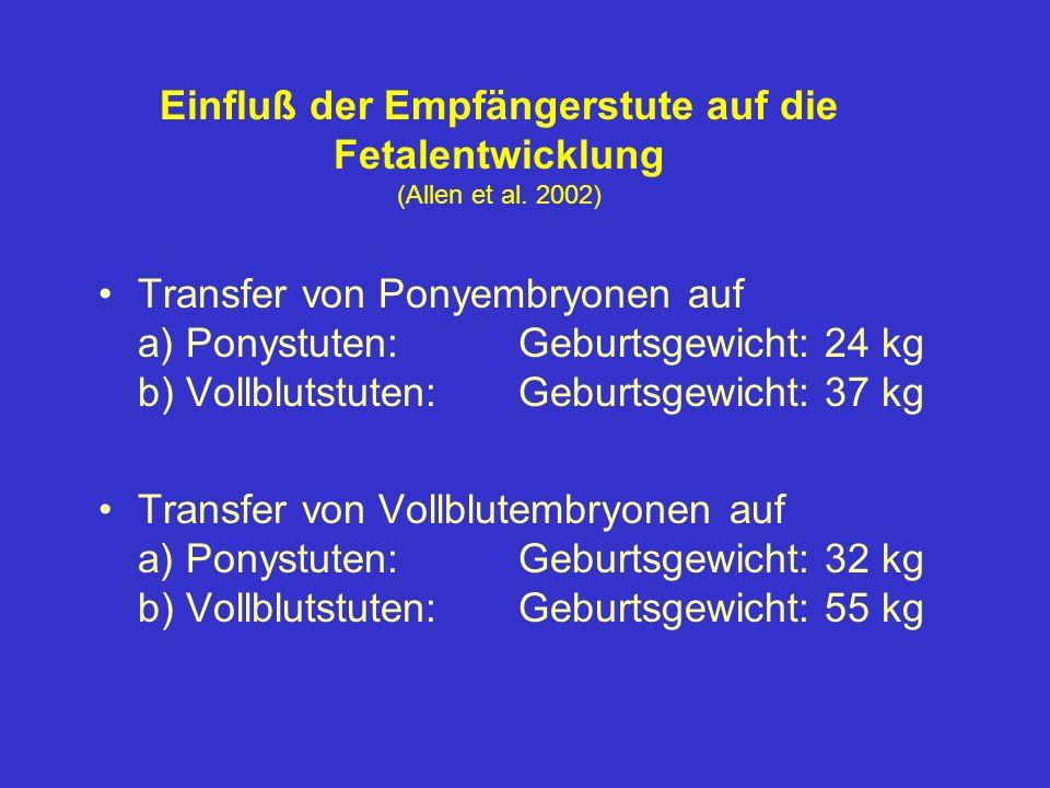 Einfluß der Empfängerstute auf die Fetalentwicklung (Allen et al. 2002) Transfer von Ponyembryonen auf a) Ponystuten:Geburtsgewicht: 24 kg b) Vollblut