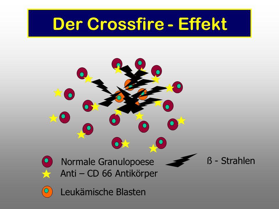 Der Crossfire - Effekt Normale Granulopoese Anti – CD 66 Antikörper Leukämische Blasten ß - Strahlen