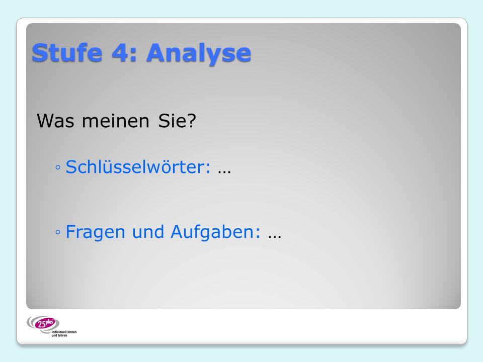 Stufe 4: Analyse Was meinen Sie? Schlüsselwörter: … Fragen und Aufgaben: …