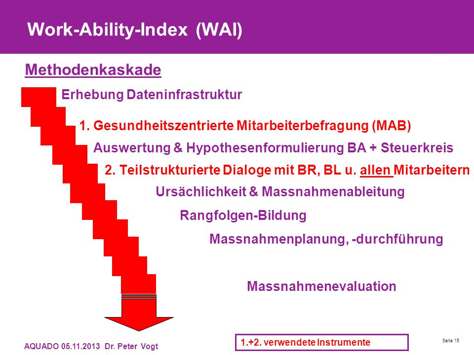 Work-Ability-Index (WAI) Methodenkaskade Erhebung Dateninfrastruktur 1.