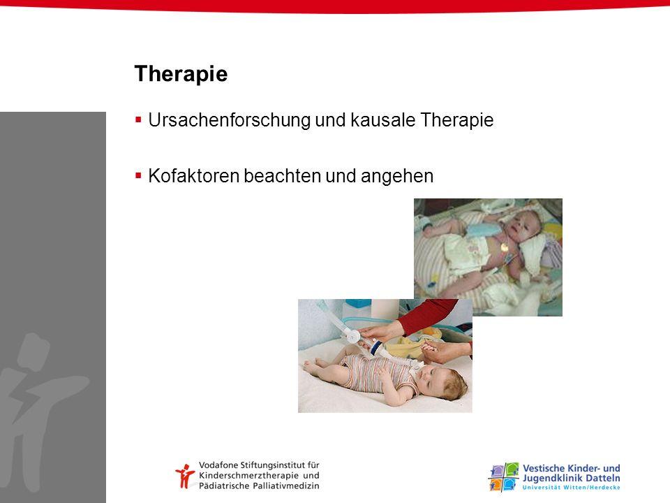 Therapie Ursachenforschung und kausale Therapie Kofaktoren beachten und angehen