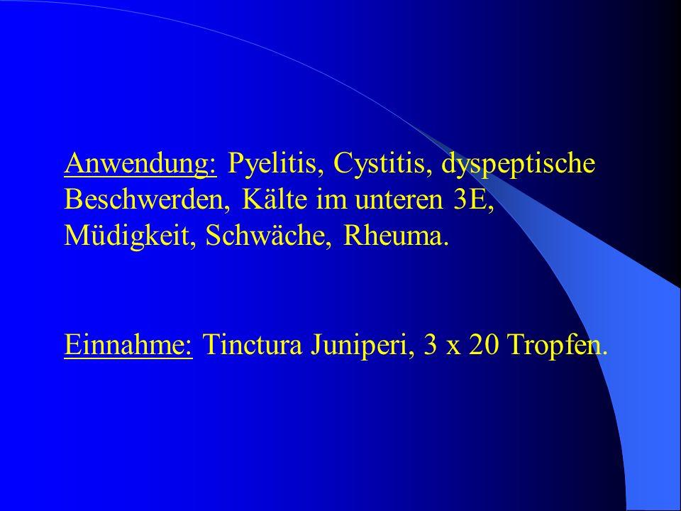 Anwendung: Pyelitis, Cystitis, dyspeptische Beschwerden, Kälte im unteren 3E, Müdigkeit, Schwäche, Rheuma. Einnahme: Tinctura Juniperi, 3 x 20 Tropfen