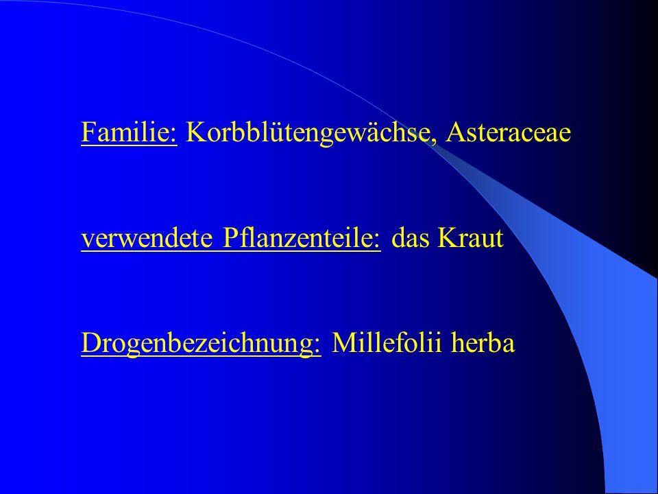 Familie: Korbblütengewächse, Asteraceae verwendete Pflanzenteile: das Kraut Drogenbezeichnung: Millefolii herba