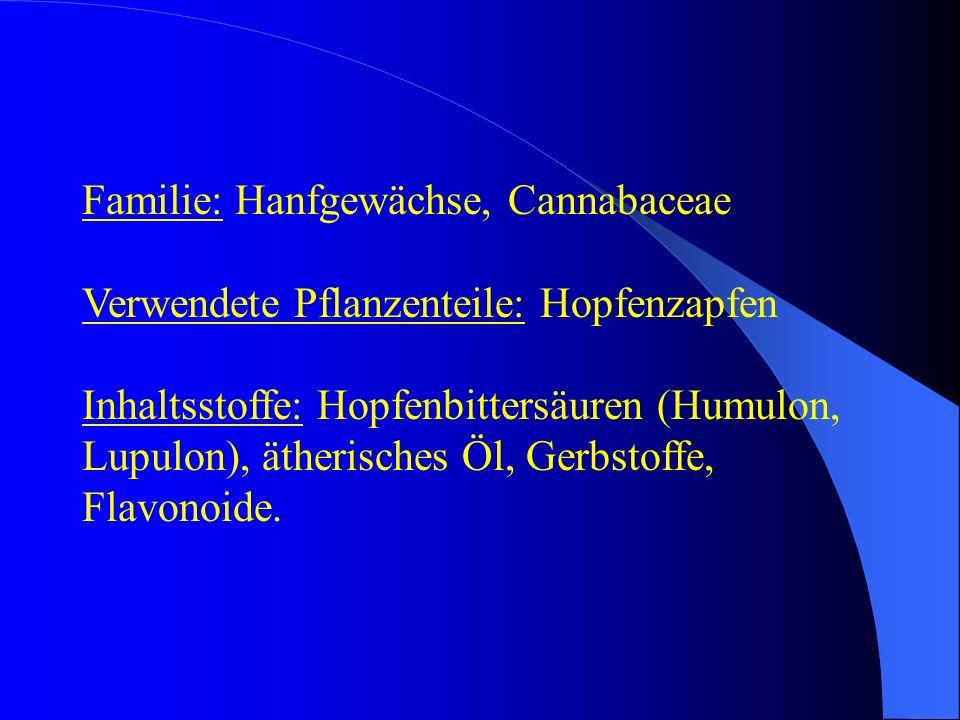 Familie: Hanfgewächse, Cannabaceae Verwendete Pflanzenteile: Hopfenzapfen Inhaltsstoffe: Hopfenbittersäuren (Humulon, Lupulon), ätherisches Öl, Gerbst
