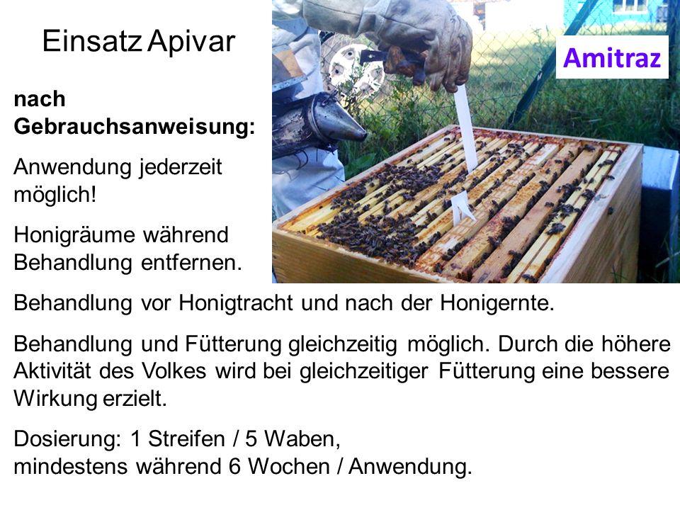 Einsatz Apivar nach Gebrauchsanweisung: Anwendung jederzeit möglich! Honigräume während Behandlung entfernen. Behandlung vor Honigtracht und nach der