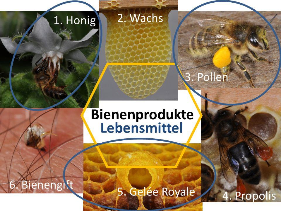 Basispapier durch: Swissmedic (Federführung) BVET BAG BLW, Agroscope Zentrum für Bienenforschung Amtliche Futtermittelkontrolle Information für: Imkerinnen und Imker Kantonstierärzte amtliche Tierärzte Bieneninspektoren Produkte-Hersteller BGD hat verständliche Liste erstellt