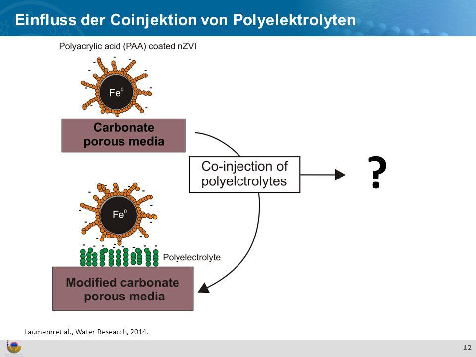 Effekte und Verhalten von TiO 2 Nanopartikeln in der aquatischen Umwelt 12 Einfluss der Coinjektion von Polyelektrolyten Laumann et al., Water Researc