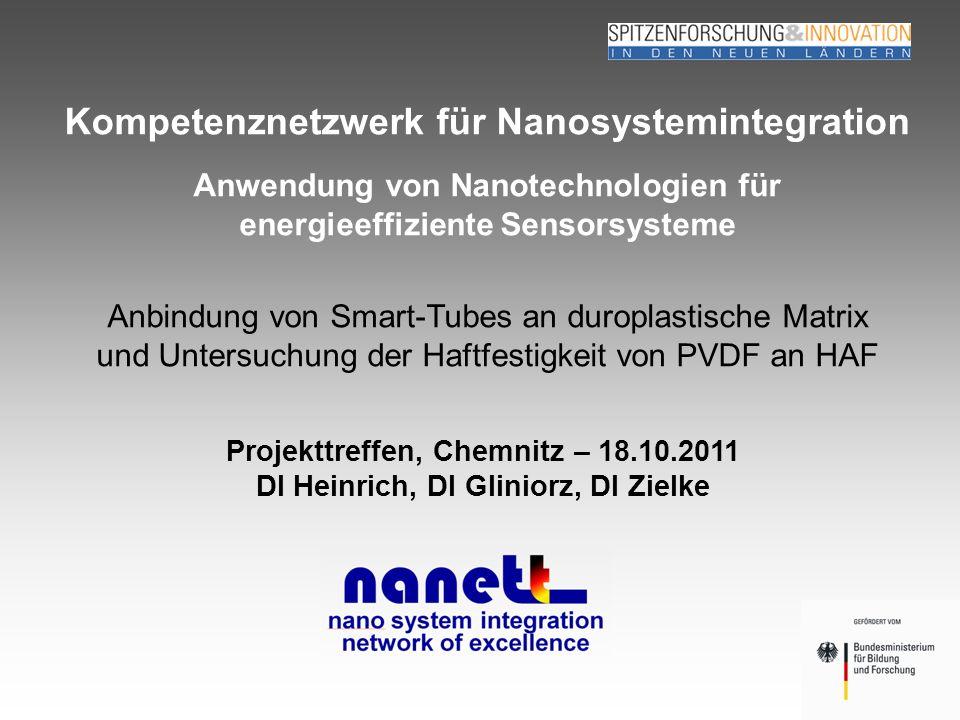 Seite 1 Heinrich, Zielke, Gliniorz TU Chemnitz, SLK 18.10.2011 Kompetenznetzwerk für Nanosystemintegration Projekttreffen, Chemnitz – 18.10.2011 DI He