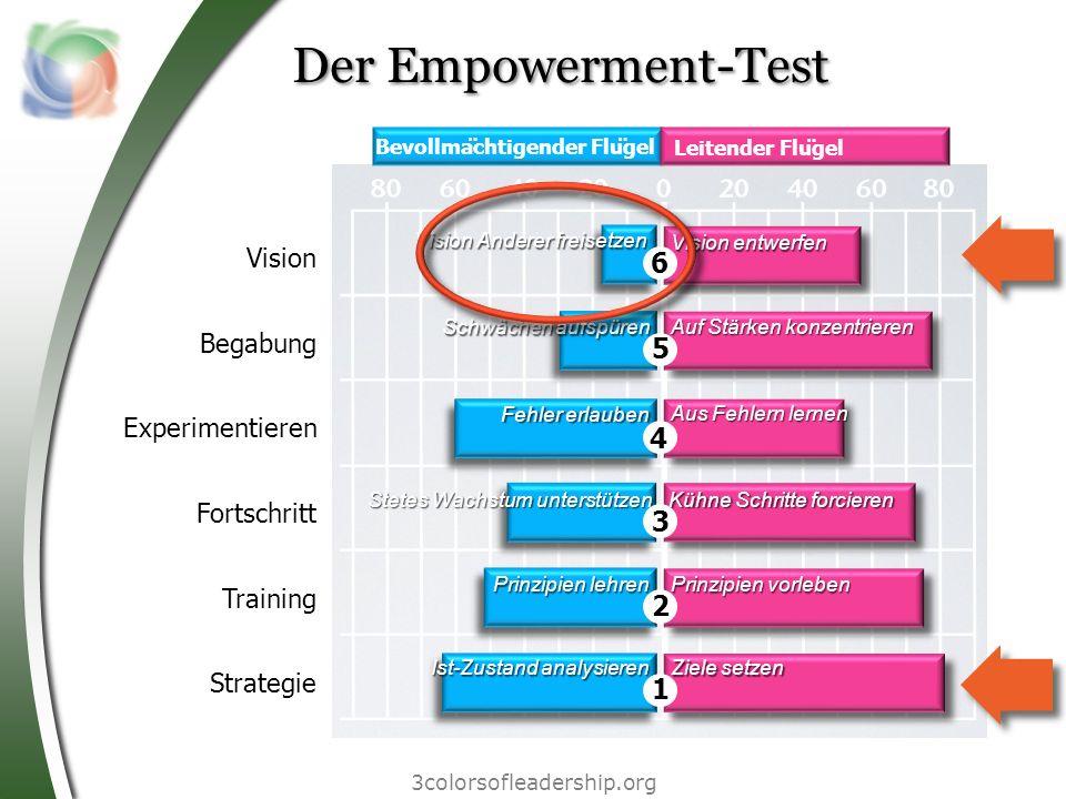 3colorsofleadership.org Der Empowerment-Test Vision Begabung Experimentieren Fortschritt Training Strategie Bevollmächtigender Flügel Leitender Flü