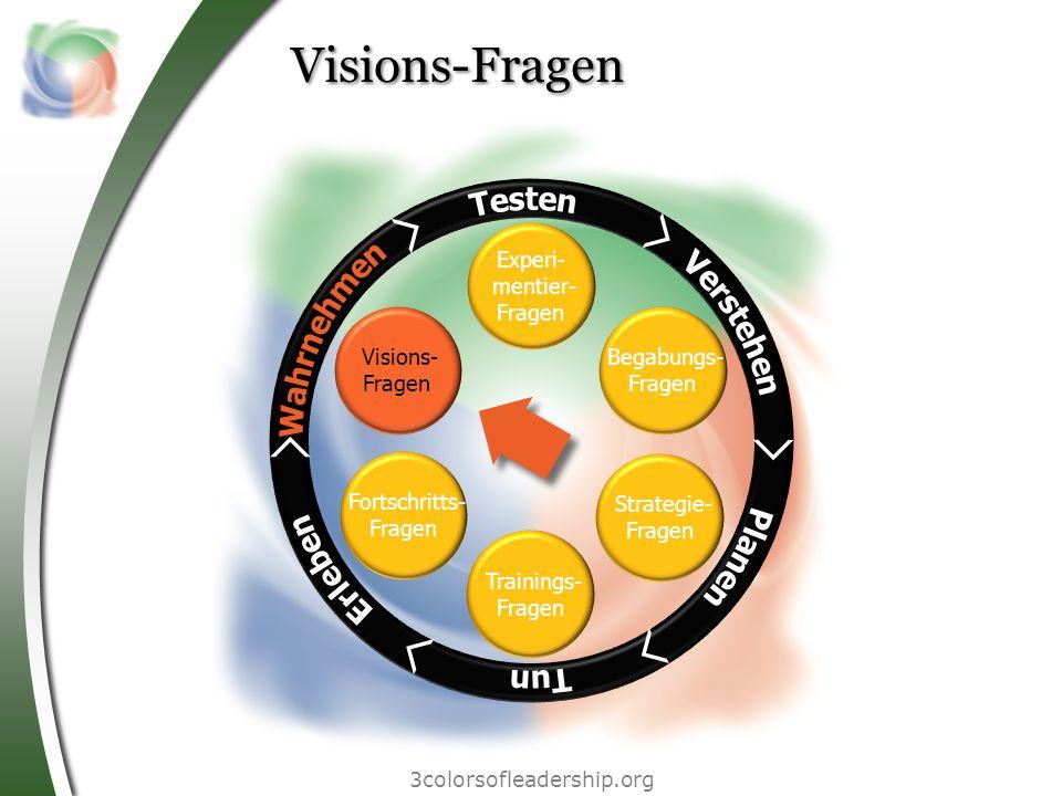 3colorsofleadership.org Visions-Fragen Begabungs- Fragen Strategie- Fragen Trainings- Fragen Fortschritts- Fragen Visions- Fragen Experi- mentier- Fra