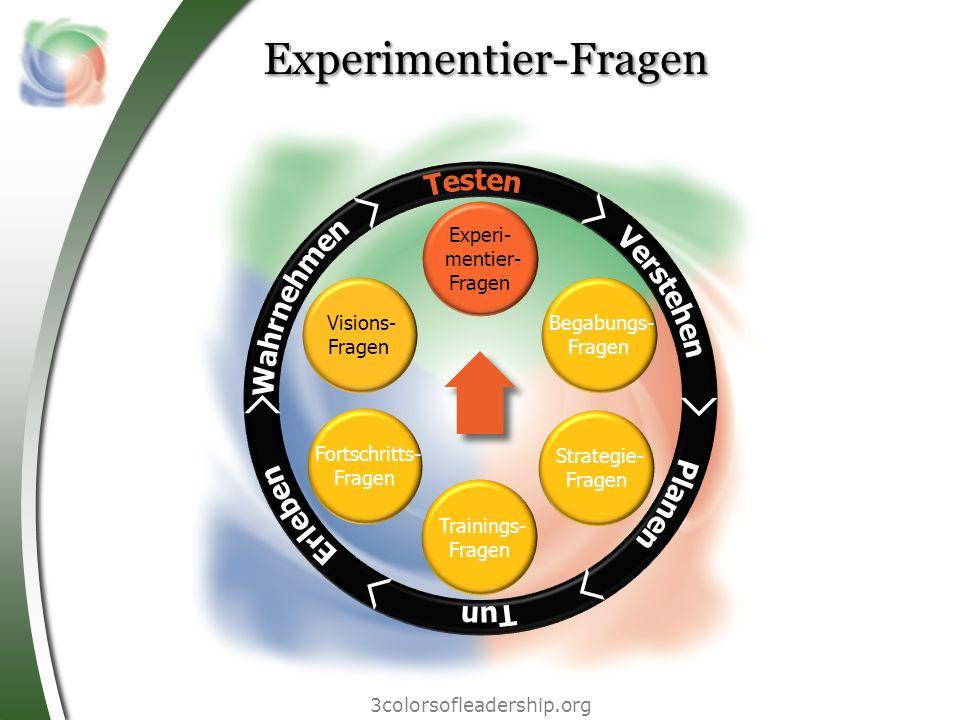 3colorsofleadership.org Experimentier-Fragen Begabungs- Fragen Strategie- Fragen Trainings- Fragen Fortschritts- Fragen Visions- Fragen Experi- mentie