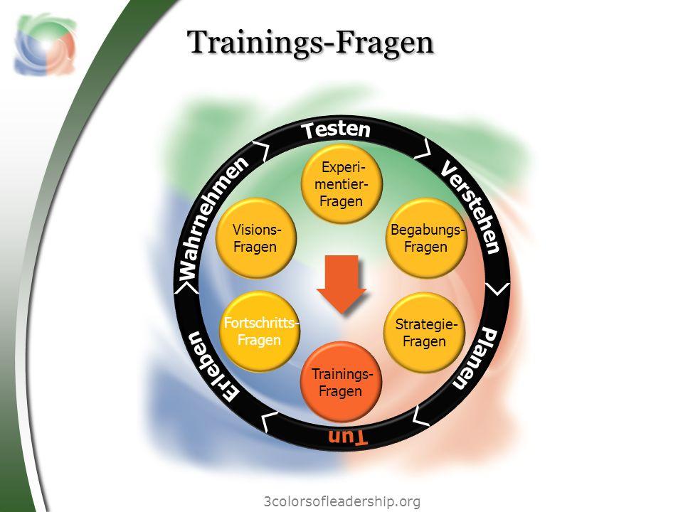 3colorsofleadership.org Trainings-Fragen Strategie- Fragen Begabungs- Fragen Experi- mentier- Fragen Fortschritts- Fragen Visions- Fragen