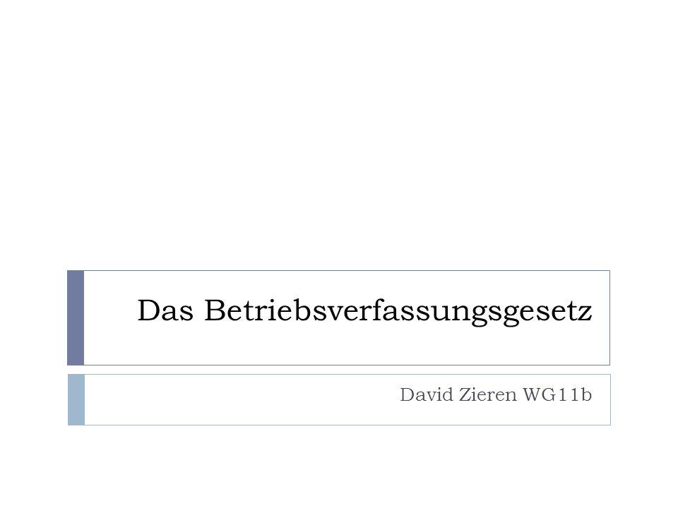 Das Betriebsverfassungsgesetz David Zieren WG11b