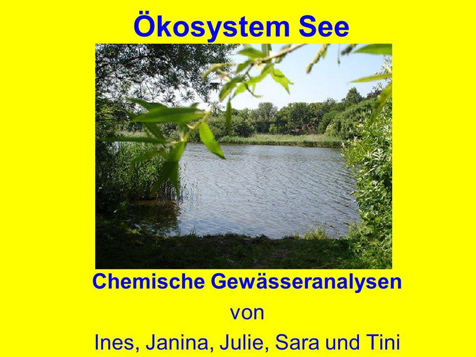 Ökosystem See Chemische Gewässeranalysen von Ines, Janina, Julie, Sara und Tini