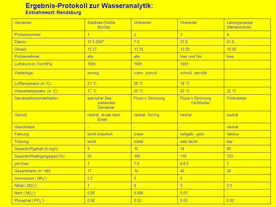 Gewässer:Stadtsee (Weiße Brücke) UntereiderObereiderLeitungswasser (Herderschule) Probennummer:1234 Datum:31.5.20077.6.21.6. Uhrzeit:13.3713.3513.5515