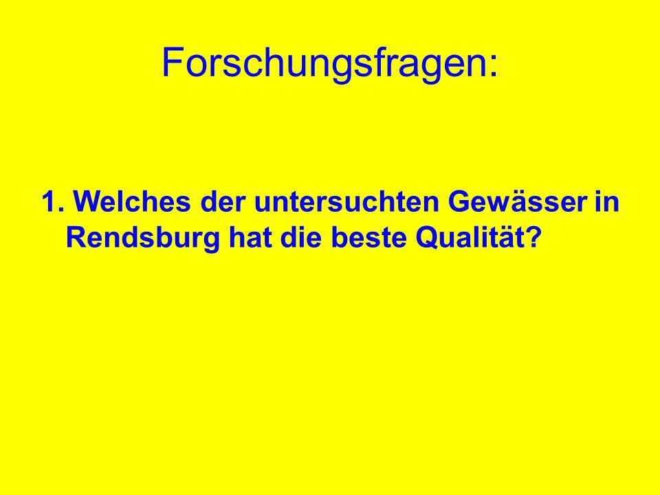 Forschungsfragen: 1. Welches der untersuchten Gewässer in Rendsburg hat die beste Qualität?