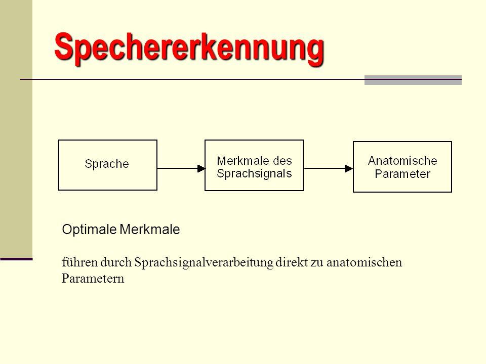 Spechererkennung Optimale Merkmale führen durch Sprachsignalverarbeitung direkt zu anatomischen Parametern