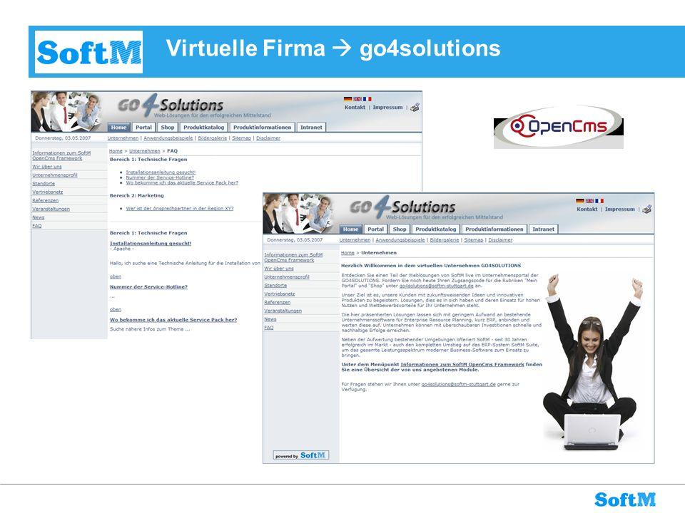 Virtuelle Firma go4solutions