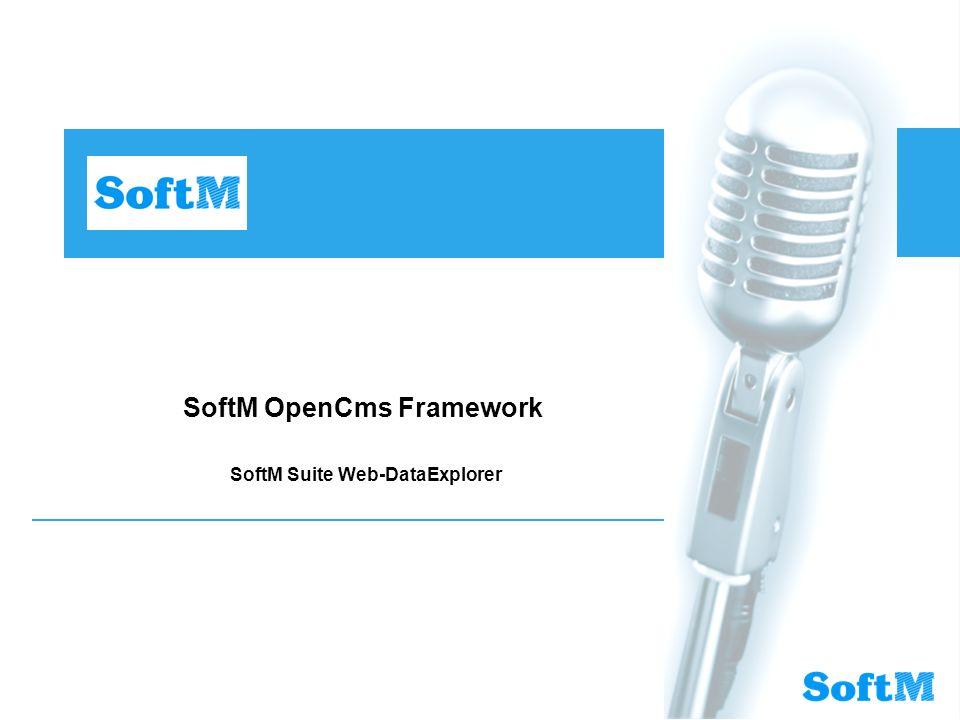 SoftM OpenCms Framework SoftM Suite Web-DataExplorer