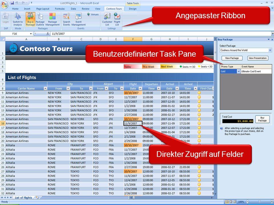 Angepasster Ribbon Benutzerdefinierter Task Pane Direkter Zugriff auf Felder
