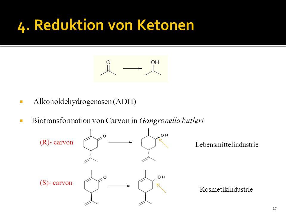 Alkoholdehydrogenasen (ADH) Biotransformation von Carvon in Gongronella butleri (R)- carvon (S)- carvon 17 Lebensmittelindustrie Kosmetikindustrie