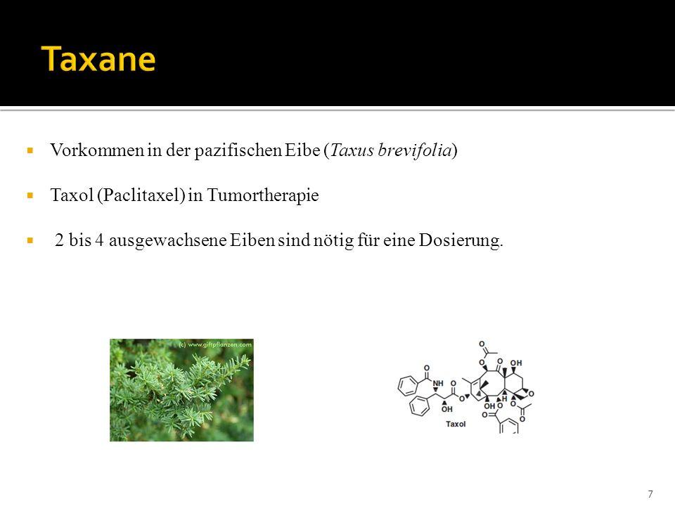Vorkommen in der pazifischen Eibe (Taxus brevifolia) Taxol (Paclitaxel) in Tumortherapie 2 bis 4 ausgewachsene Eiben sind nötig für eine Dosierung. 7