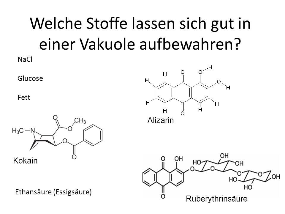 Welche Stoffe lassen sich gut in einer Vakuole aufbewahren? Ethansäure (Essigsäure) NaCl Glucose Fett Ruberythrinsäure Alizarin Kokain