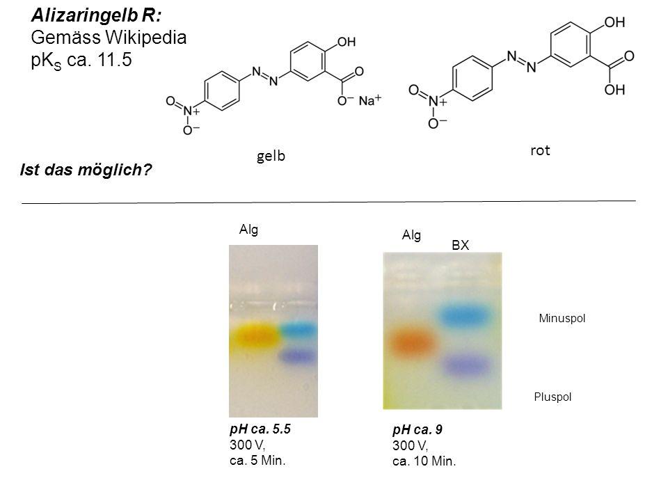 Minuspol Pluspol pH ca. 9 300 V, ca. 10 Min. BX Alg pH ca. 5.5 300 V, ca. 5 Min. Alizaringelb R: Gemäss Wikipedia pK S ca. 11.5 gelb rot Ist das mögli