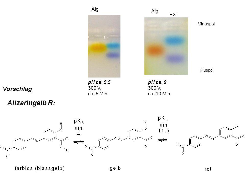 Minuspol Pluspol pH ca. 9 300 V, ca. 10 Min. BX Alg pH ca. 5.5 300 V, ca. 5 Min. Alizaringelb R: Vorschlag